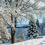 Winter am Titisee | Maritim Hotel Titisee
